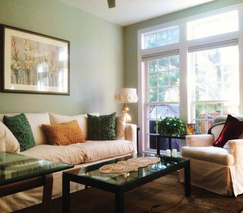 interior in home color consultation